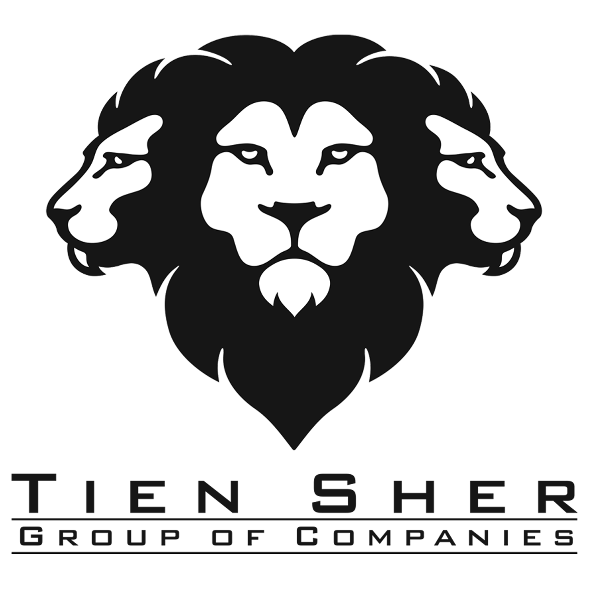 Tien Sher Logo